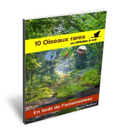 Ebook nature - 10 oiseaux rares ou difficiles à voir en forêt de Fontainebleau