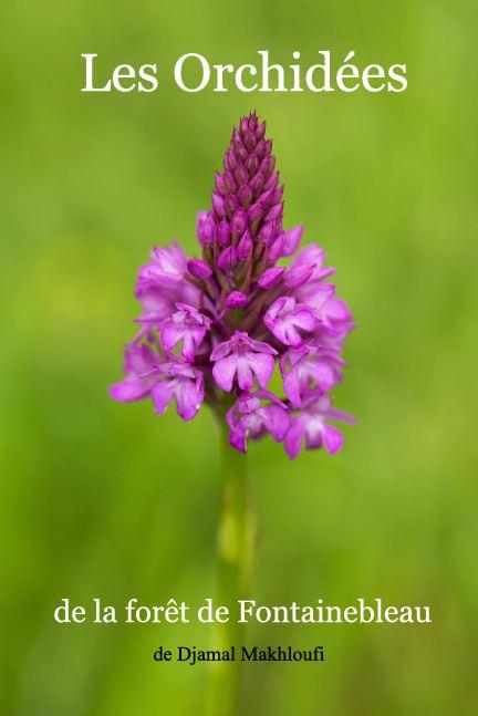 Ebook nature - Orchidées de la forêt de Fontainebleau
