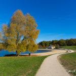 Ile de loisirs de Bois le Roi (paysages de la forêt de Fontainebleau)
